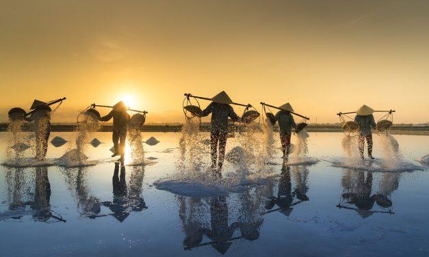 Réaliser un voyage humanitaire au Vietnam